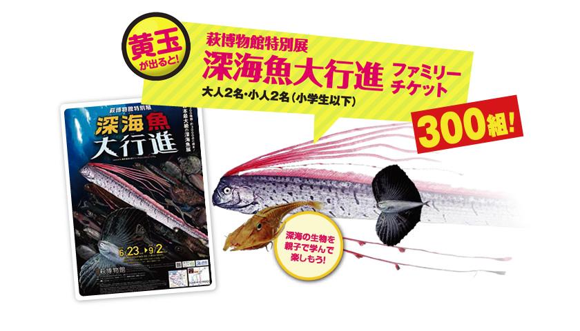黄玉で萩博物館深海魚大行進ファミリーチケットが当たる