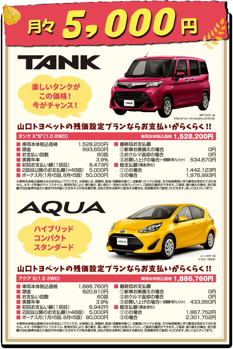 月々5000円