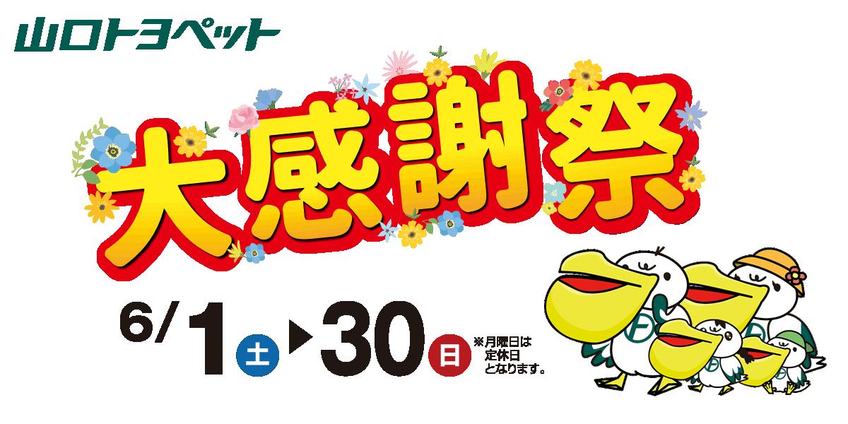 山口トヨペット大感謝祭