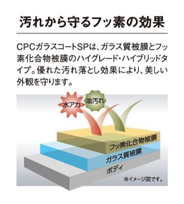 汚れから守るフッ素の効果